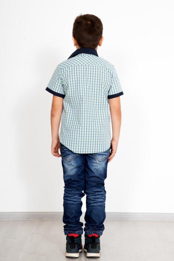 Рубашка Боб Арт. 2842
